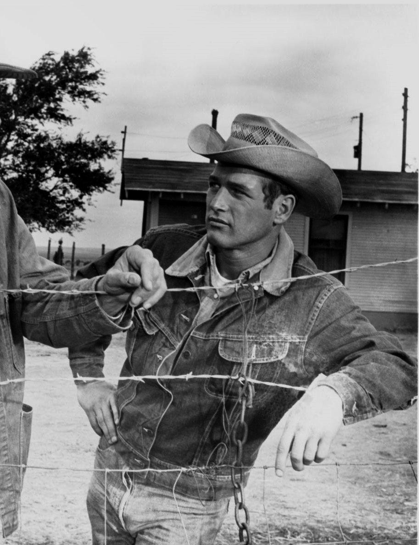 Paul Newman com uma Lee Stormrider em Hud