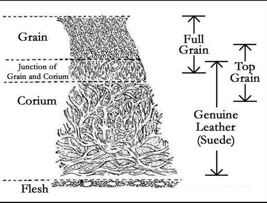 diagrama com a classificação dos tipos de couro