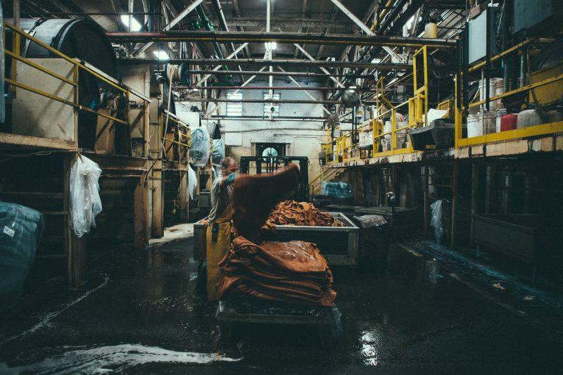 fabrica-redwing